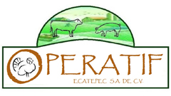 Operatif240